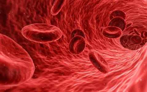 Blood biomarker for recovery